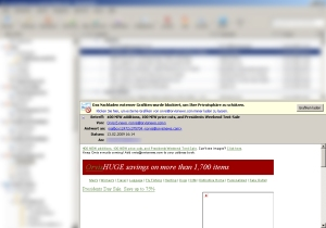 Orbis: Darstellung der E-Mail im Vorschaufenster (Thunderbird) bei unterdrückten Bildern